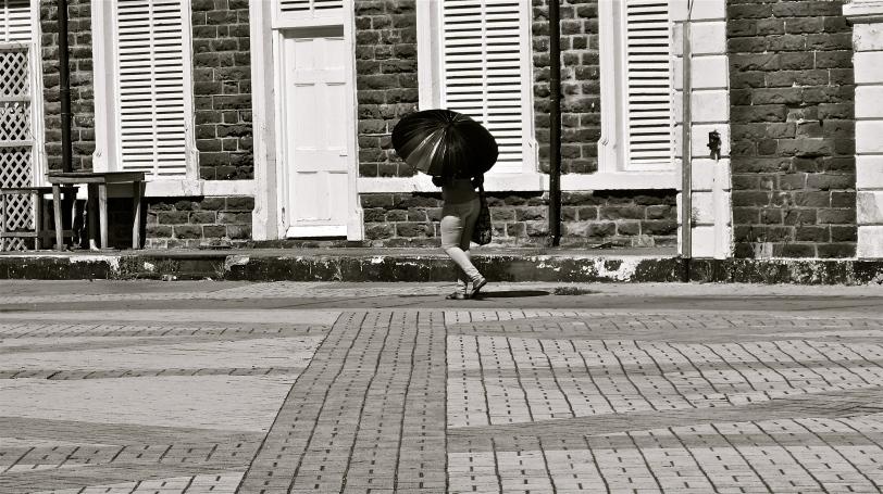 'Parasol'