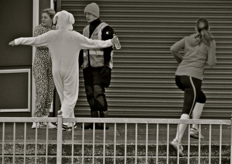 'Run Rabbit'